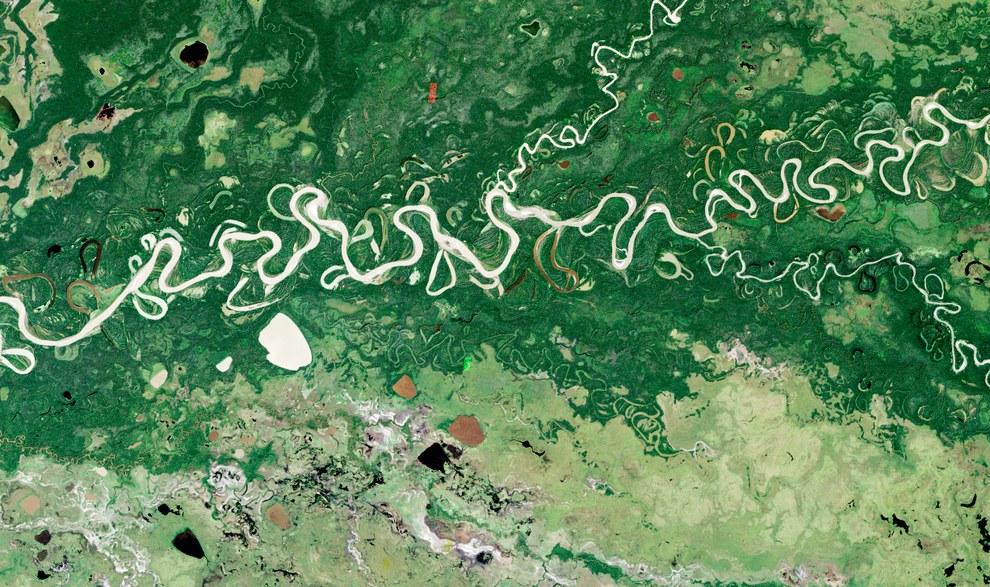 Amazon Basin 2