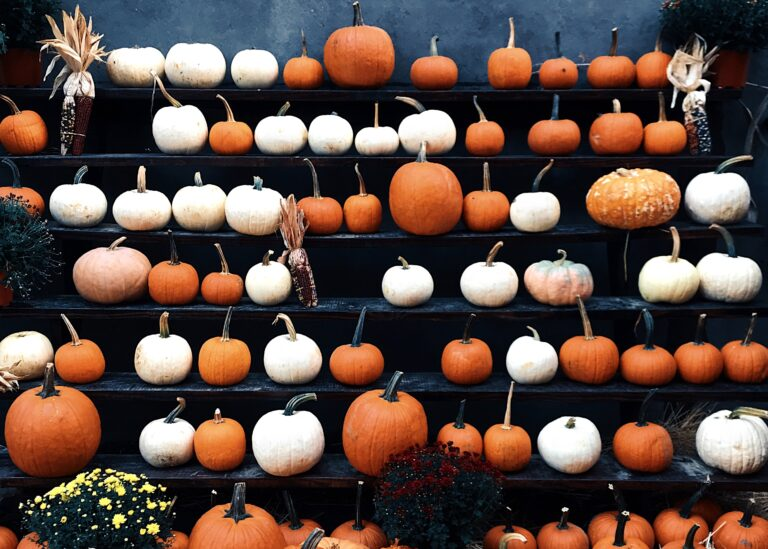Halloween pumpkins on a stand for DIY Halloween costume ideas.